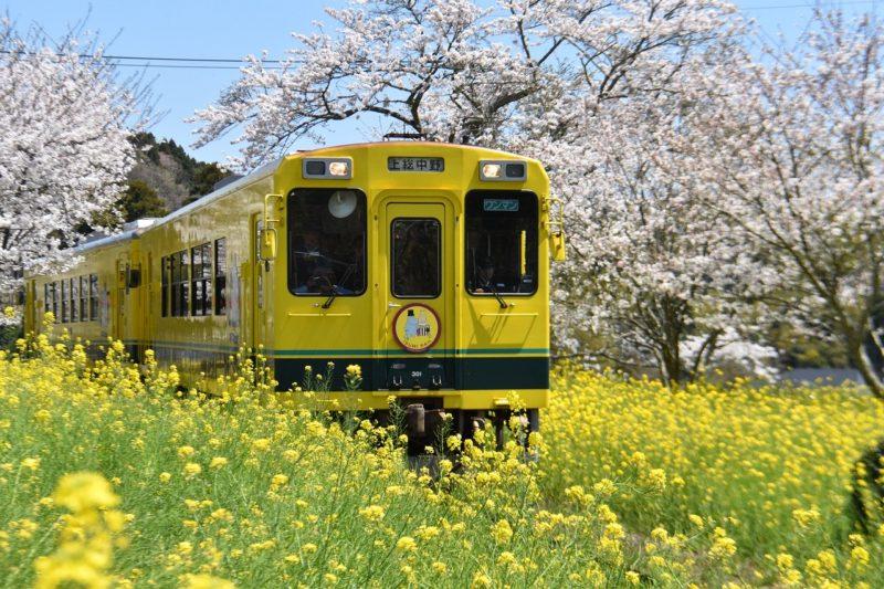 帰省の際に乗る電車