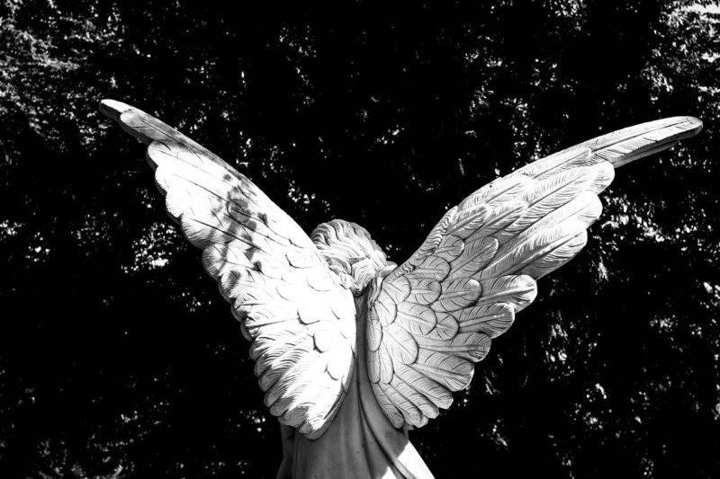 復活をイメージさせる再び翼を広げた天使